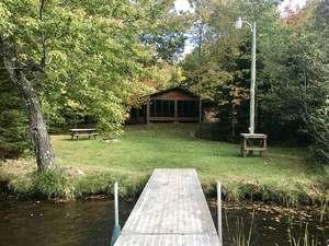 Quiet Cabin